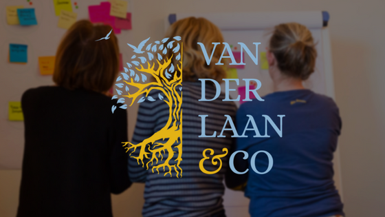 innovative solutions with van der laan & co